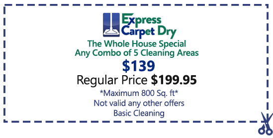 Carpet Cleaning Specials Carpet Cleaning Coupons